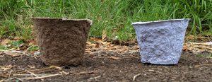 Cardboard compostable pot (left) & paper compostable pot (right)